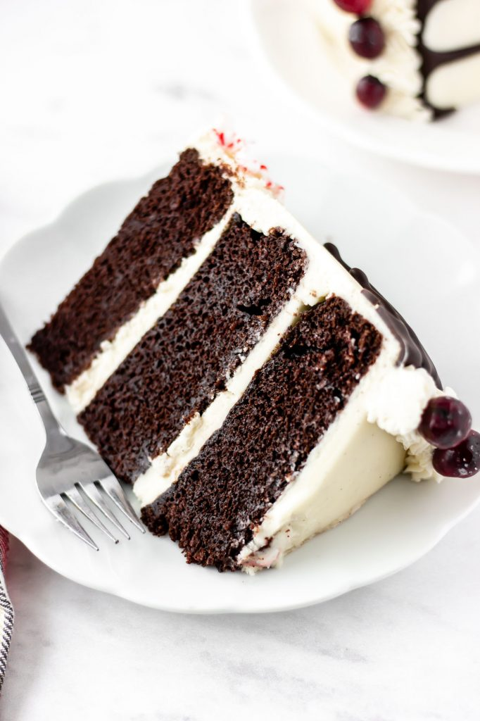 chocolate holiday cake slice