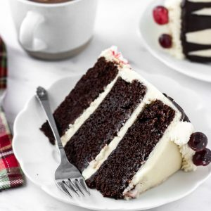 chocolate holiday cake slice with hot cocoa